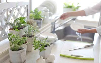 Der eigene Kräutergarten der Küche