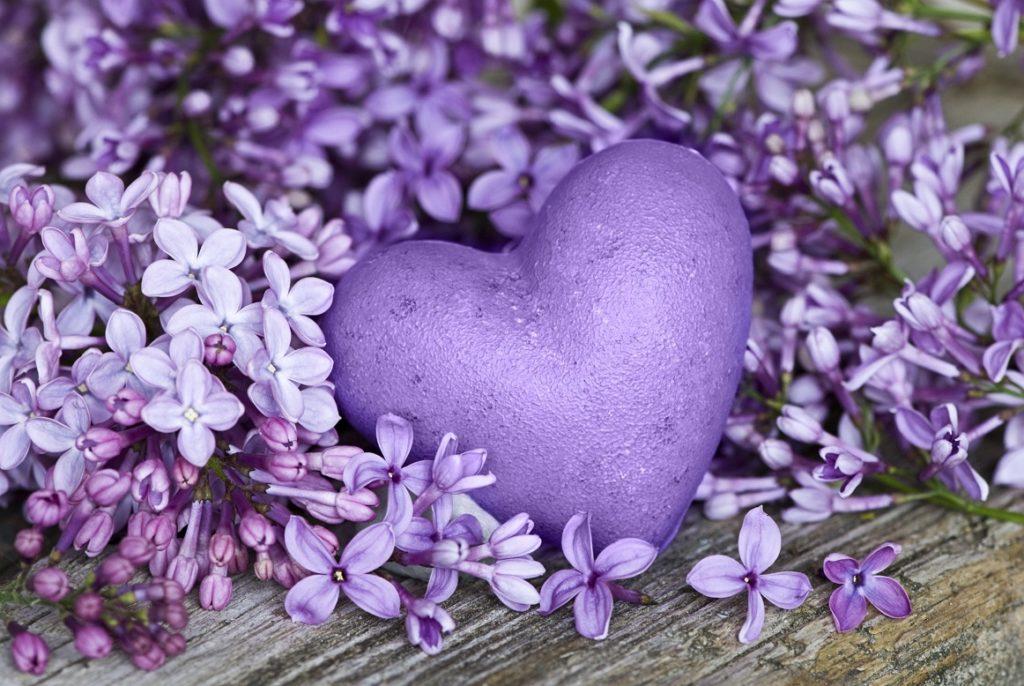 lila Herz mit Flieder