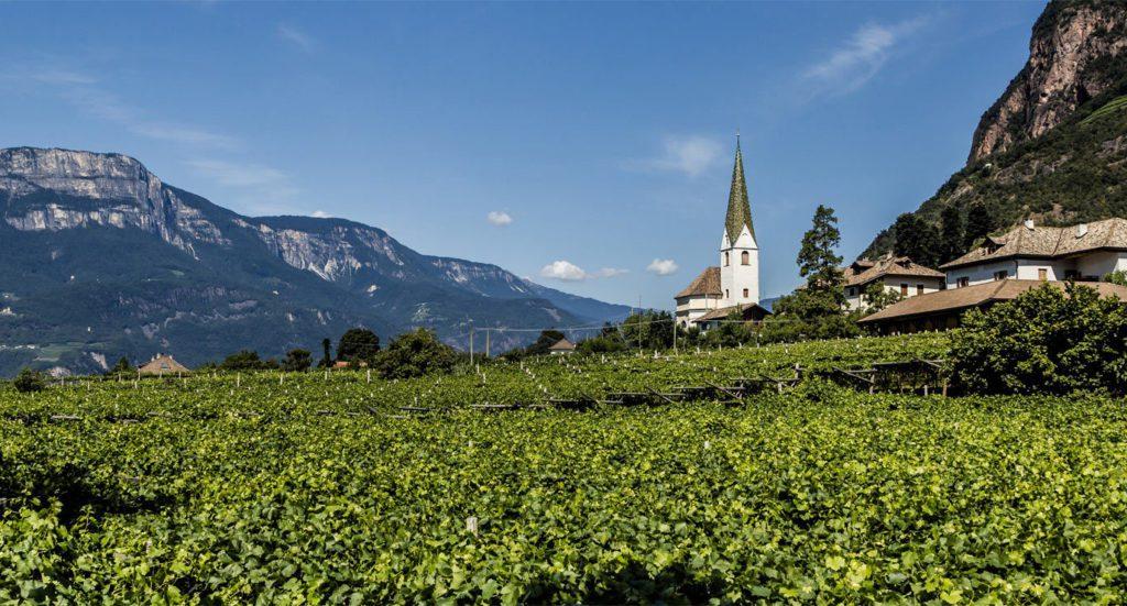Mittleres Etschtal - Weine mit Alterungspotential (Bild: © Vinum Hotels Südtirol)