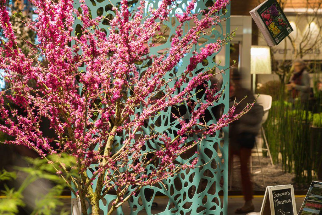 Giardina 2017 | Fokusthema |Balcony Gardening | Gaertnerei Schwitter
