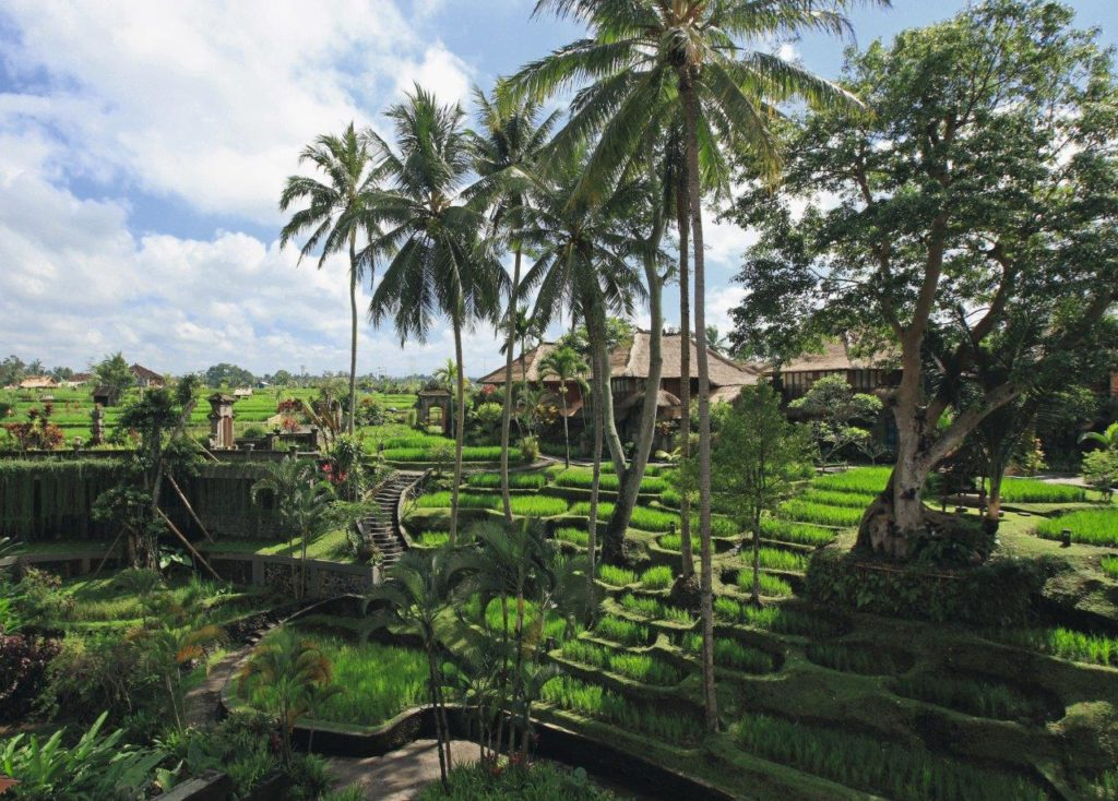 Hotelplan_Bali