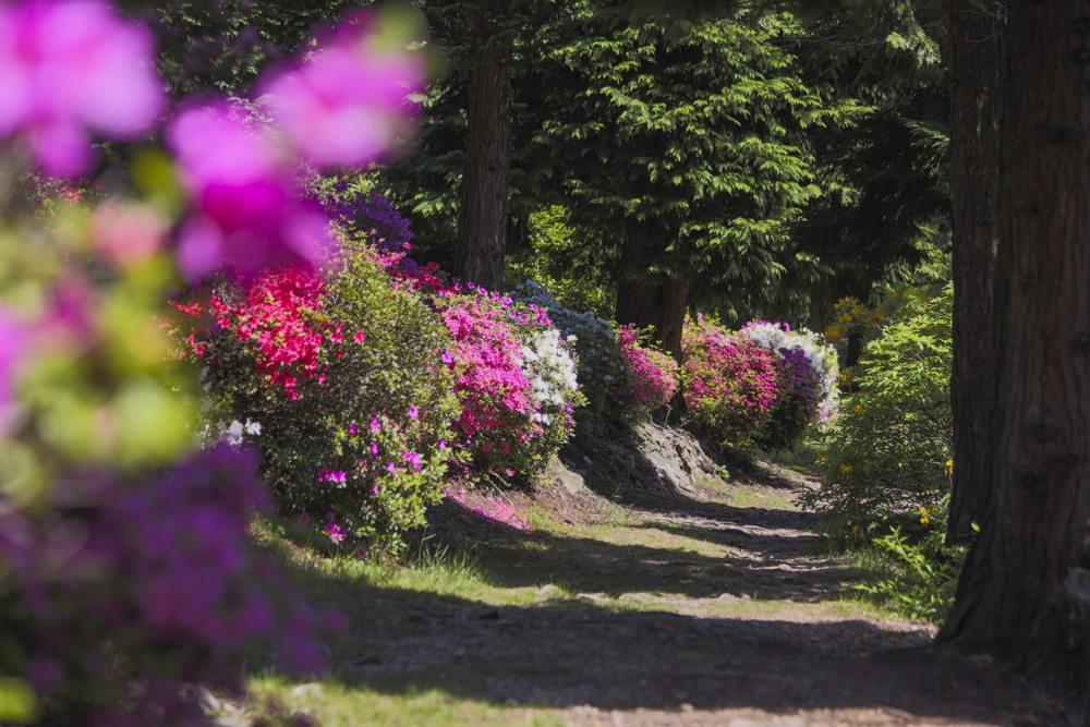 Parco-San-Grato-LTURISMO