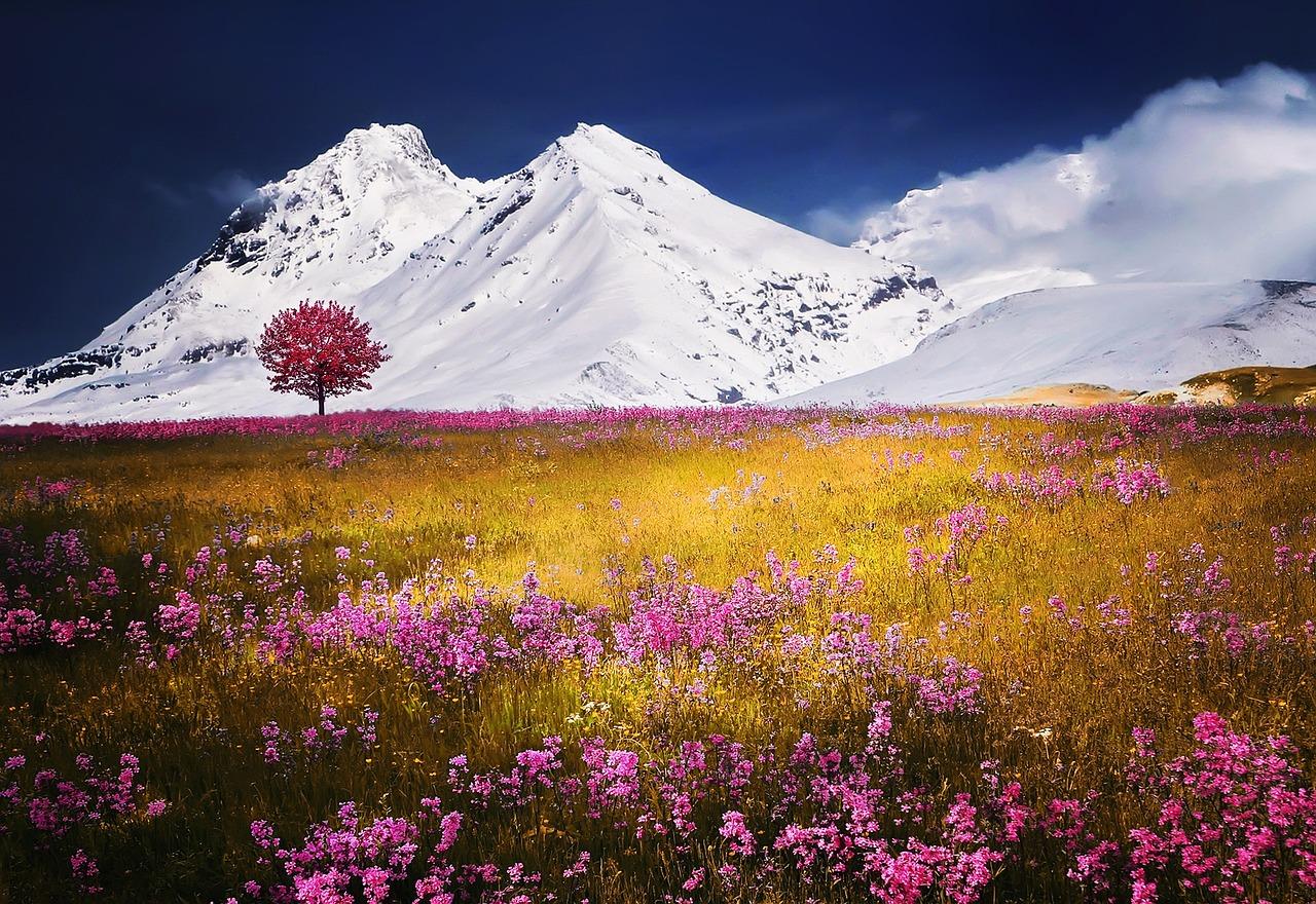 """Die Schönheit der Alpen-Region kann jeder auf vielfältige Art und Weise geniessen. (Bild: pixabay.com © Bess-Hamati Creative, <a title=""""creativecommons.org"""" href=""""https://creativecommons.org/publicdomain/zero/1.0/deed.de"""" target=""""_blank"""">Commons CC0</a>)"""