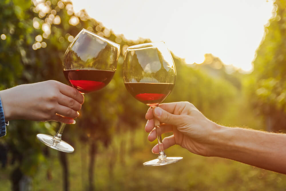 Tessiner Wein geniessen (Bild: NDStock - shutterstock.com)